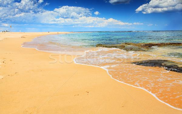 Beautiful Australian Beach in summer Stock photo © lovleah