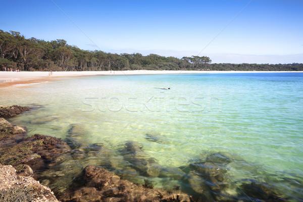Déli befejezés zöld folt tengerpart Ausztrália Stock fotó © lovleah