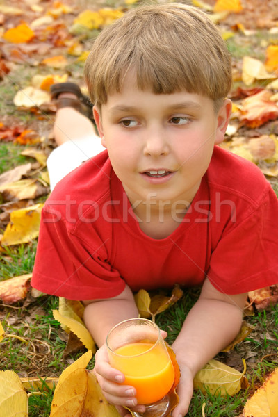 Boy in autumn nature drinking juice Stock photo © lovleah
