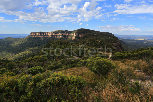 Views to Narrowneck Plateau Blue Mountains Stock photo © lovleah