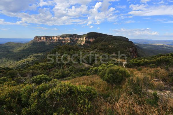 плато синий гор живописный лес природы Сток-фото © lovleah