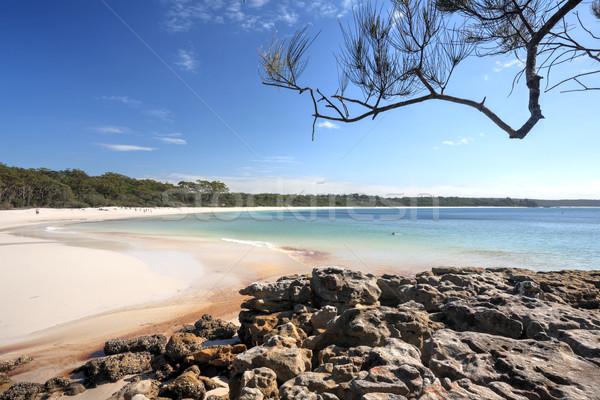 Zöld folt tengerpart Ausztrália déli befejezés Stock fotó © lovleah