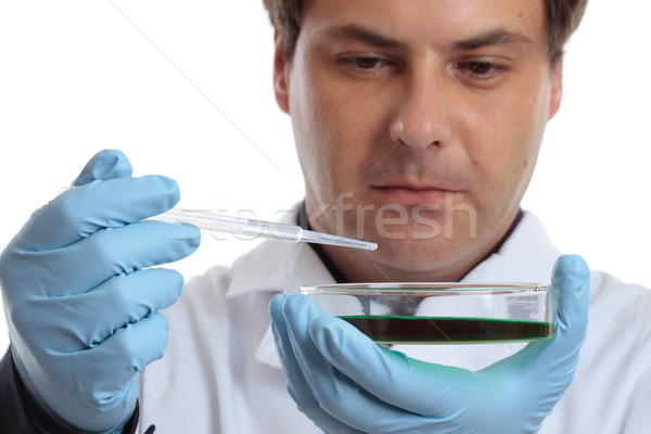 Scientist or chemist with petri dish Stock photo © lovleah