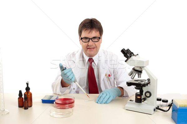 Wetenschapper bioloog werk ander laboratorium werknemer Stockfoto © lovleah