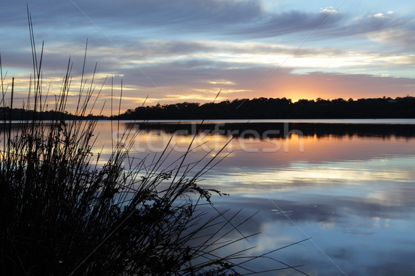 Tranquility at Narrabeen Lakes Stock photo © lovleah
