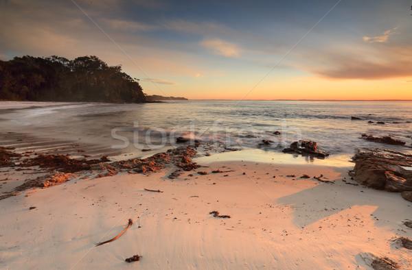 Morning light at the beach Stock photo © lovleah