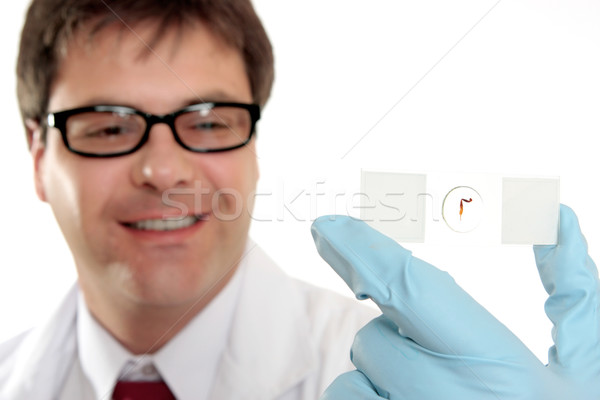 улыбаясь лаборатория работник слайдов ученого биолог Сток-фото © lovleah