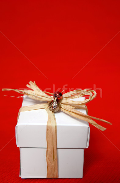 Pretty present on a red background Stock photo © lovleah