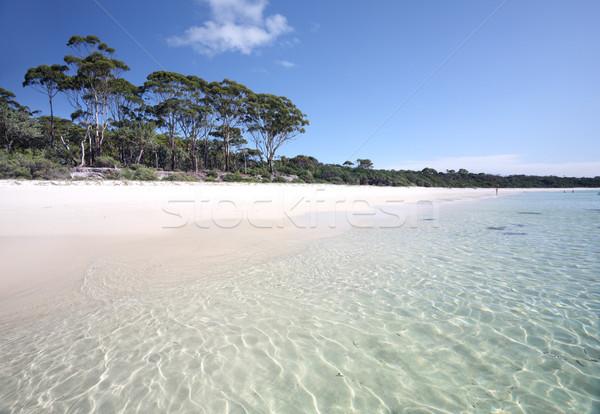 Groene strand Australië mooie witte Stockfoto © lovleah