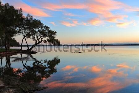 Sunset Dreaming Stock photo © lovleah