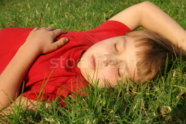 Sieste dormir enfant parc herbe vert Photo stock © lovleah