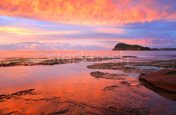 Stunning red sunrise over Lion Island from Pearl Beach Stock photo © lovleah