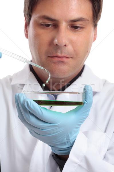 Scientist or researcher in laboratory Stock photo © lovleah