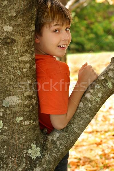 Erkek ağaç çocuk yaprak döken sonbahar Stok fotoğraf © lovleah