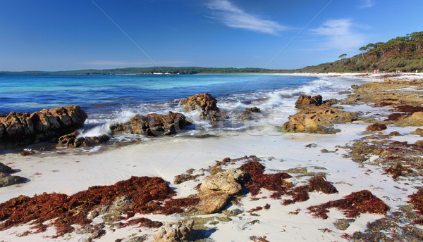 Hyams Beach, Jervis Bay Australia Stock photo © lovleah
