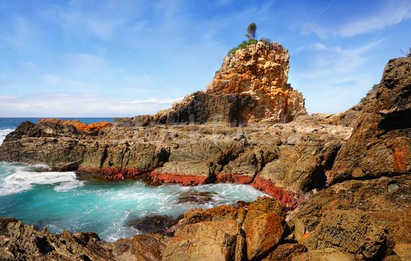 One Tree Rock, Australia Stock photo © lovleah