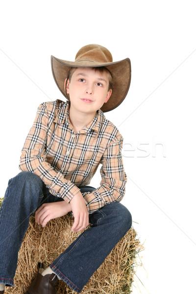 Fiú felfelé néz ül széna bála visel Stock fotó © lovleah