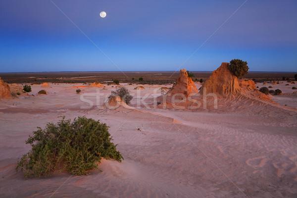 Sivatag tájkép hajnal hideg felhőtlen égbolt Stock fotó © lovleah