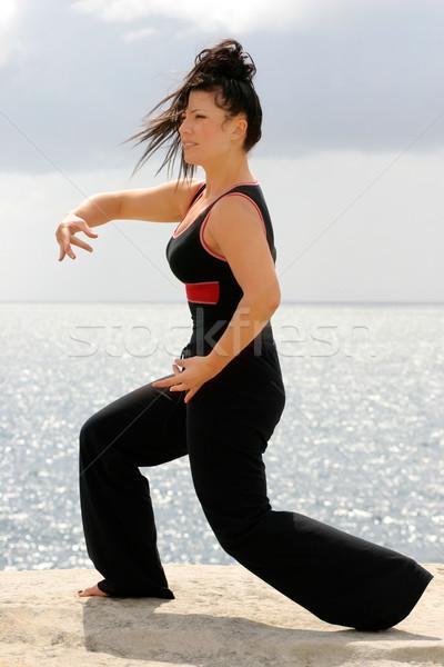 Tai chi gyönyörű nő mozog szett nők sport Stock fotó © lovleah