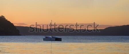 ストックフォト: 日没 · 手のひら · ビーチ · シドニー · オーストラリア · 単純な