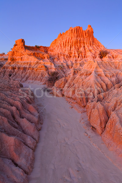 Dusk light illuminating the outback desert landforms Stock photo © lovleah