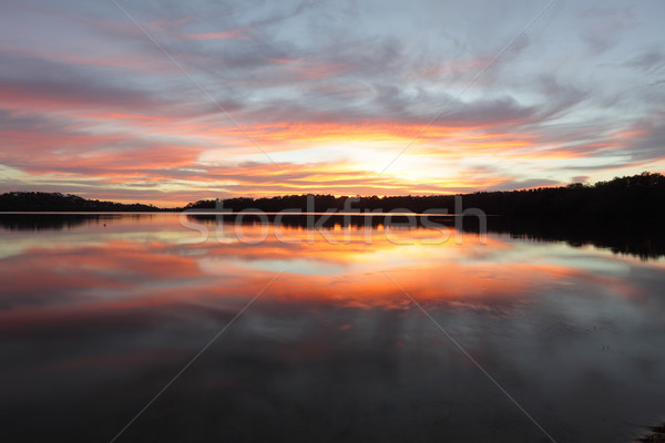 Sunrise reflections Narrabeen Lakes NSW Australia Stock photo © lovleah
