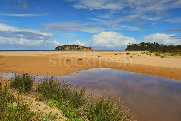 Jimmies Island views  Stock photo © lovleah