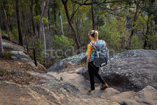Bushwalking Blue Mountains Stock photo © lovleah
