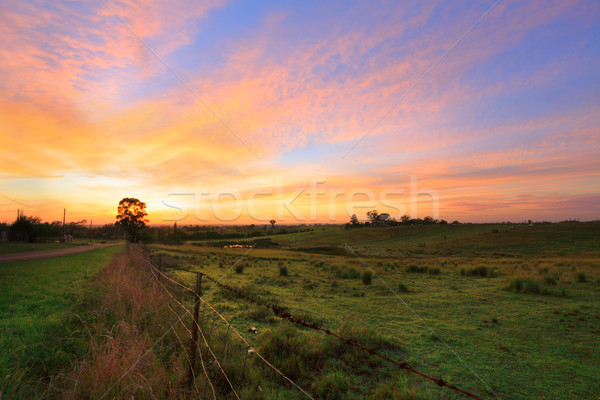 Stock photo: Sunrise in the country
