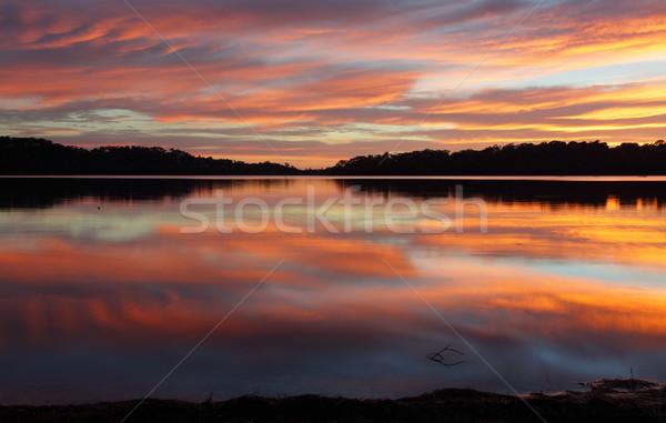 Narrabeen Lakes Reflections Stock photo © lovleah
