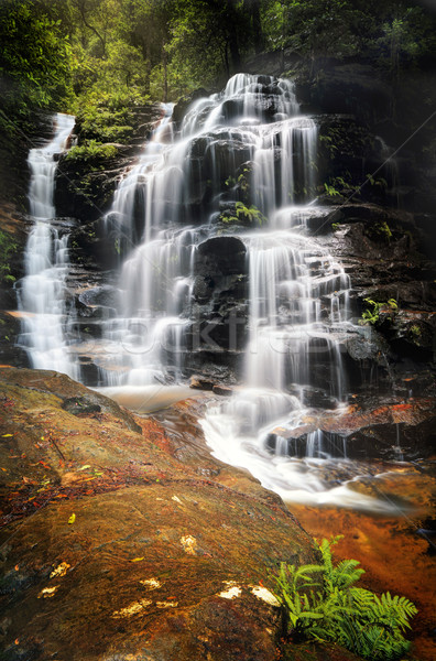 Cascading Sylvia Falls waterfall in the Blue Mountains Stock photo © lovleah