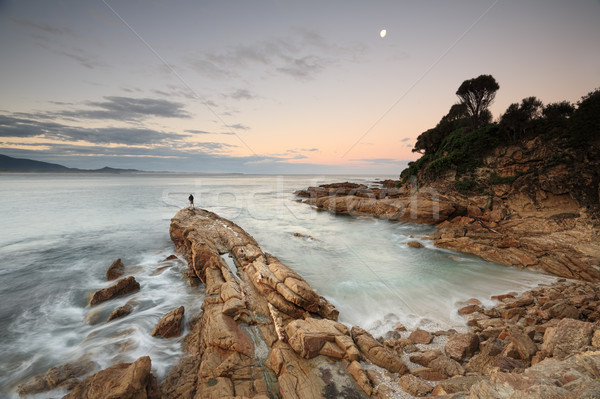 夕暮れ 光 南 海岸 オーストラリア 海 ストックフォト © lovleah
