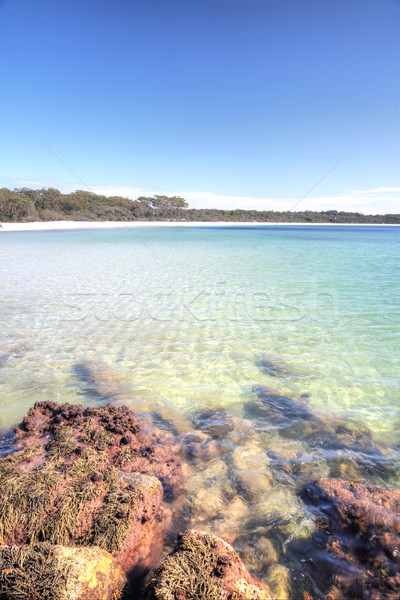 Green Patch Beach, Australia Stock photo © lovleah