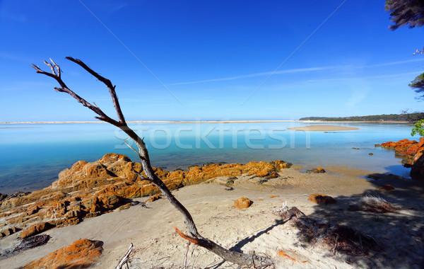 Beautiful day in Mallacoota Australia Stock photo © lovleah