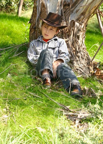 стране мальчика сидят камедь дерево Буш Сток-фото © lovleah
