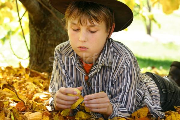 Erkek sonbahar yaprakları yeşillik çocuk altın sarı Stok fotoğraf © lovleah