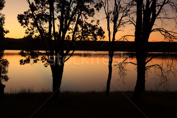 Sunset Penrith Lakes Australia Stock photo © lovleah