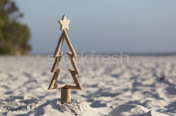 Driftwood Christmas tree on the beach Stock photo © lovleah