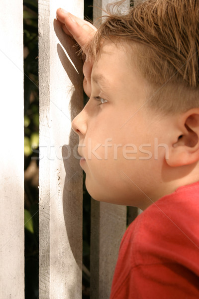 Curious child peering through a picket fence Stock photo © lovleah
