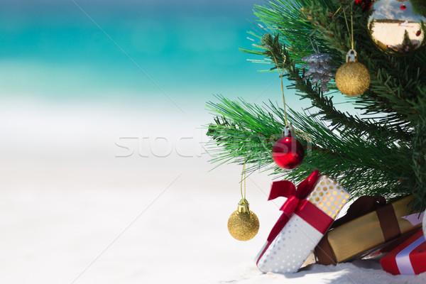 Australian Beach Christmas Stock photo © lovleah