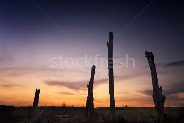 Sunset rural landscape Penrith NSW Australia Stock photo © lovleah
