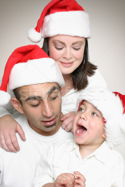 Family enjoying Christmas Stock photo © lovleah