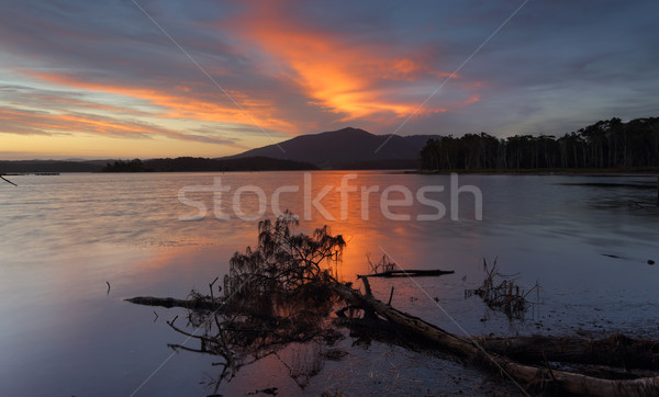 Sunset over Mt Gulaga NSW Australia Stock photo © lovleah
