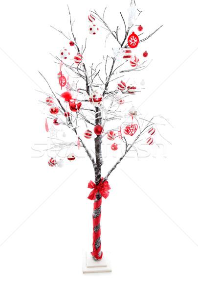 Dekore edilmiş noel ağacı kar kapalı kış Stok fotoğraf © lovleah