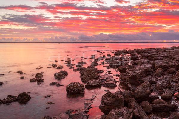 Rich red sunrise over Callala Bay Australia Stock photo © lovleah