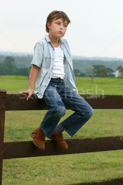 Country boy sitting on a fence Stock photo © lovleah