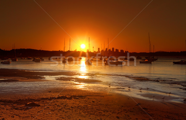 Sunset over Watsons Bay, Australia Stock photo © lovleah