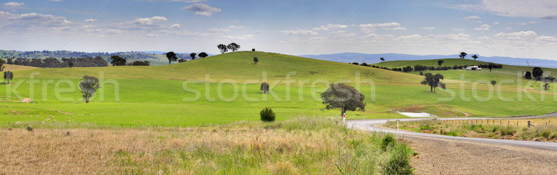 Stock photo: Hills of Mandurama Landscape