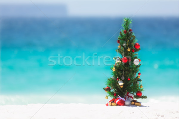 Choinka plaży lata odznaczony kolorowy przedstawia Zdjęcia stock © lovleah