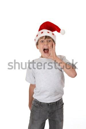 IT'S CHRISTMAS Stock photo © lovleah